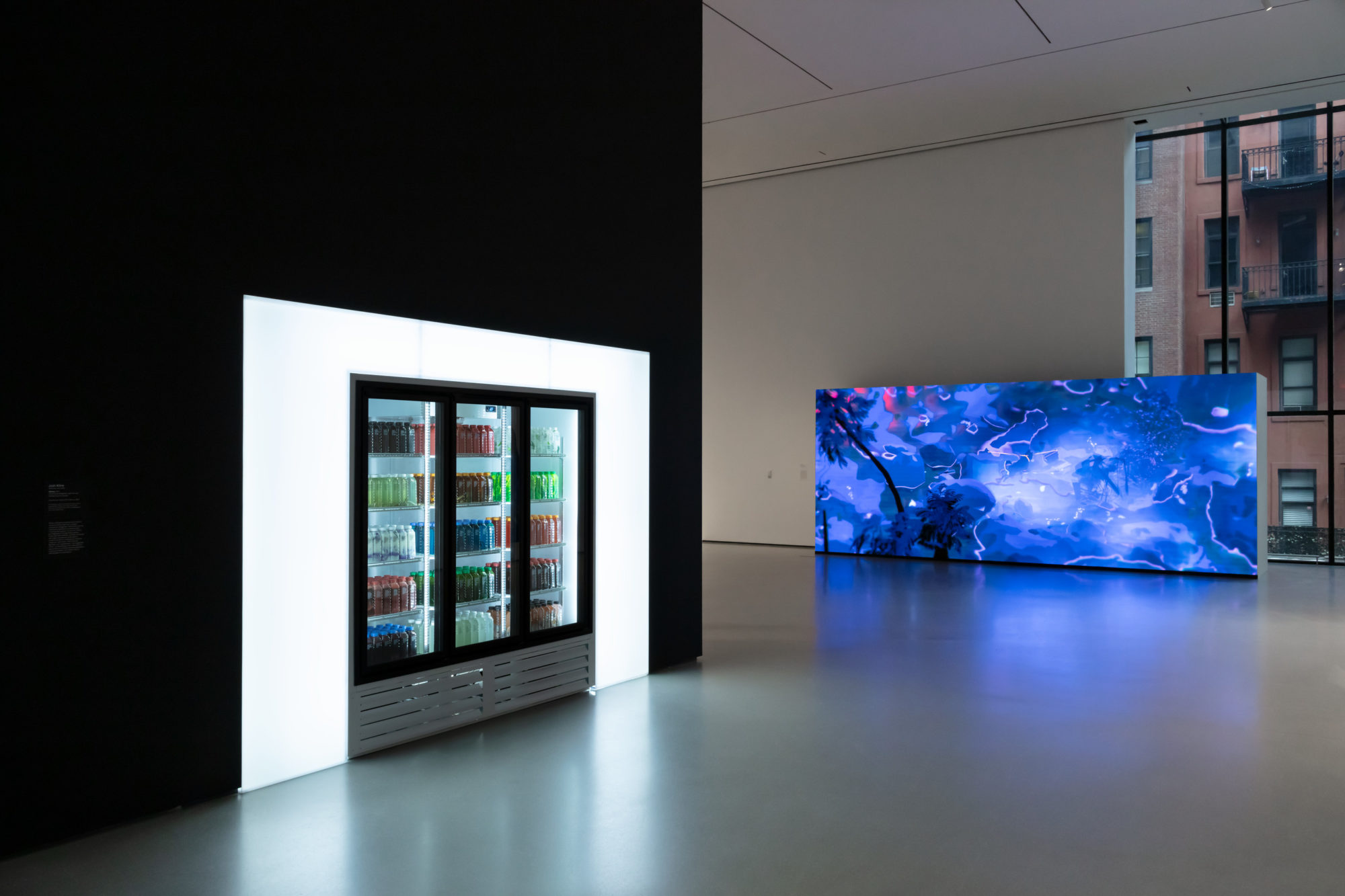 Moma, spring art guide, New Order: Art and Technology in the 21st Century