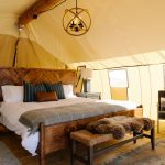 Governors island, glamping, camping