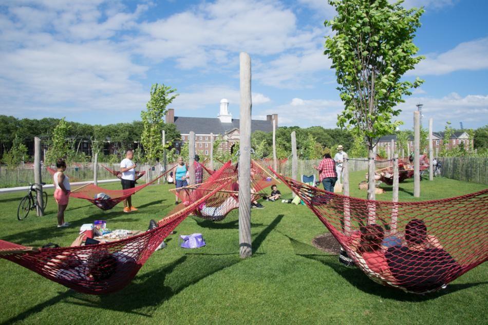 hammock, governors island, summer