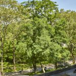 86 Riverside Drive, Riverside Drive, Upper West Side, townhouse