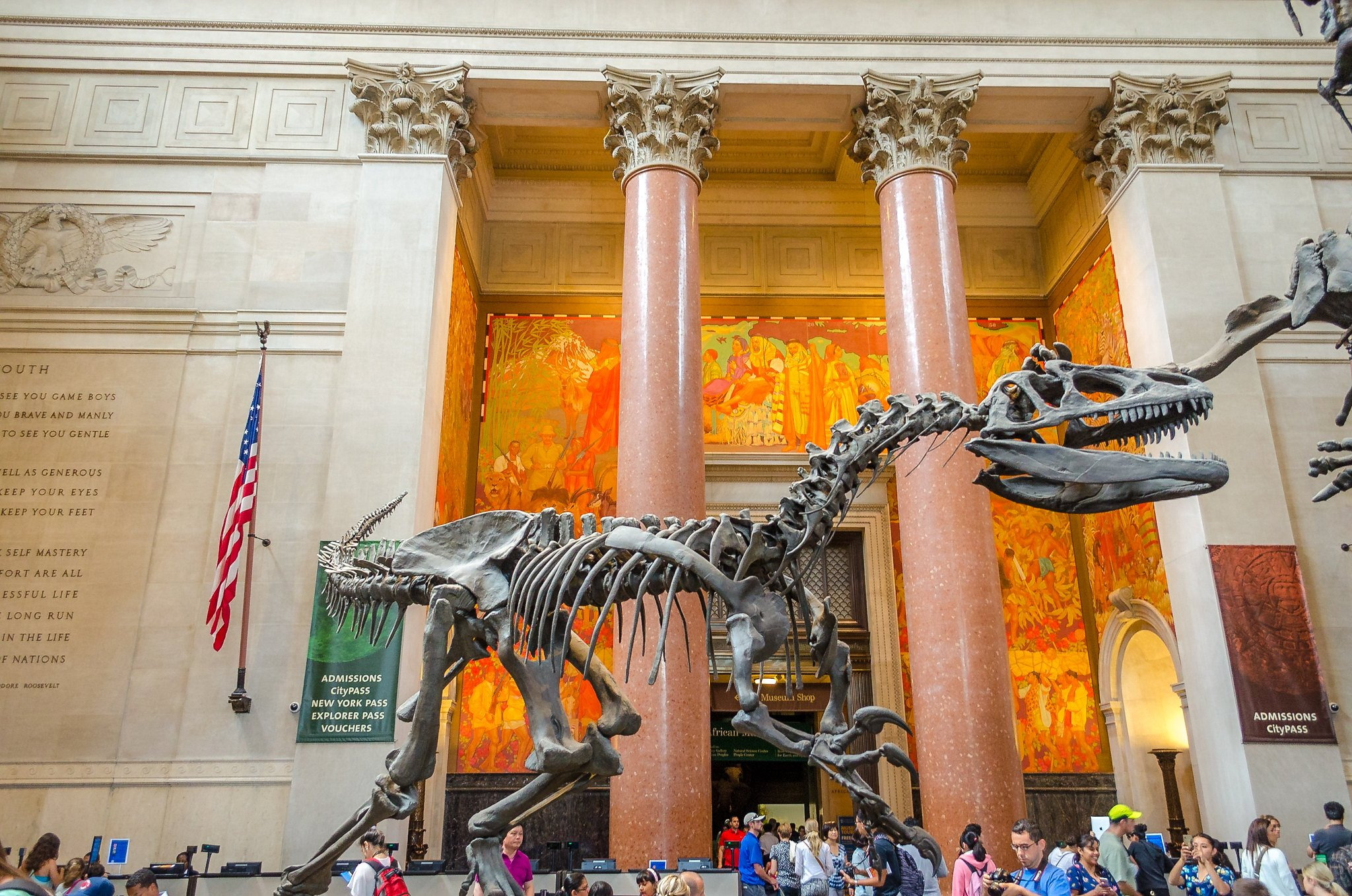 8 things you may not know about the American Museum of Natural ...