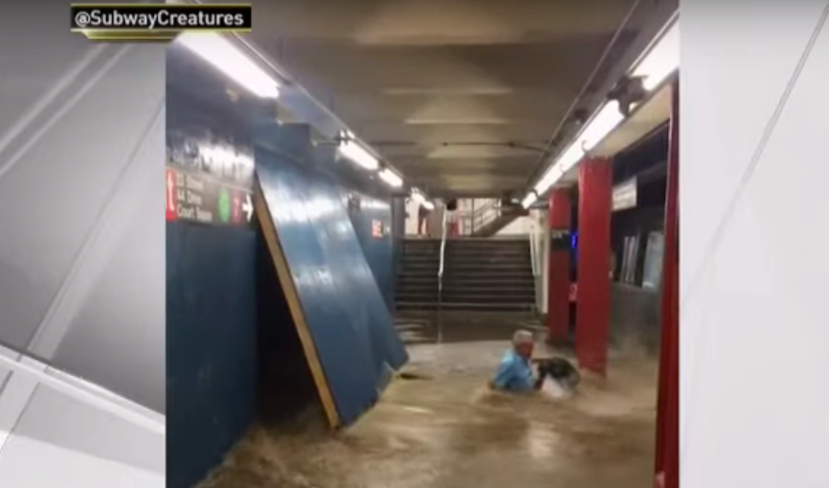 Floodwaters sweep man off his feet in Queens subway station