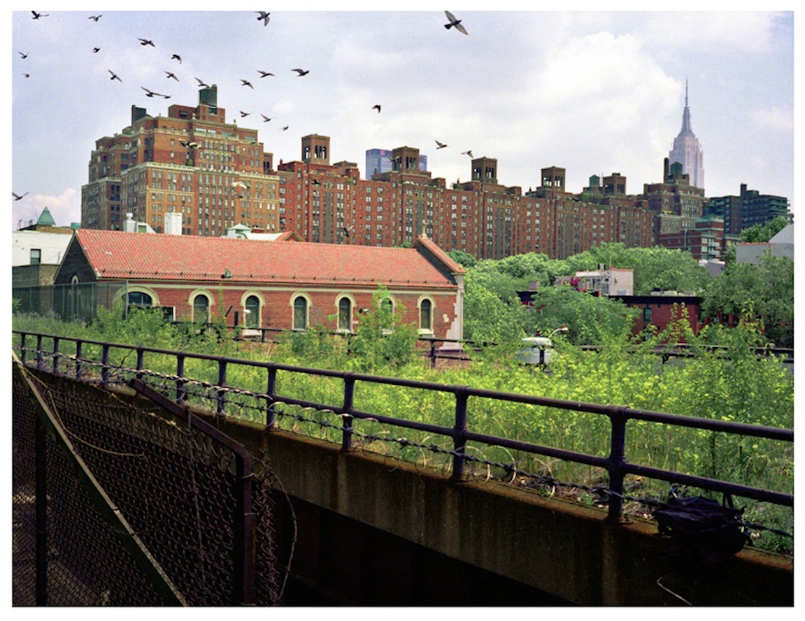 PHOTOS: See an abandoned High Line before its days as a