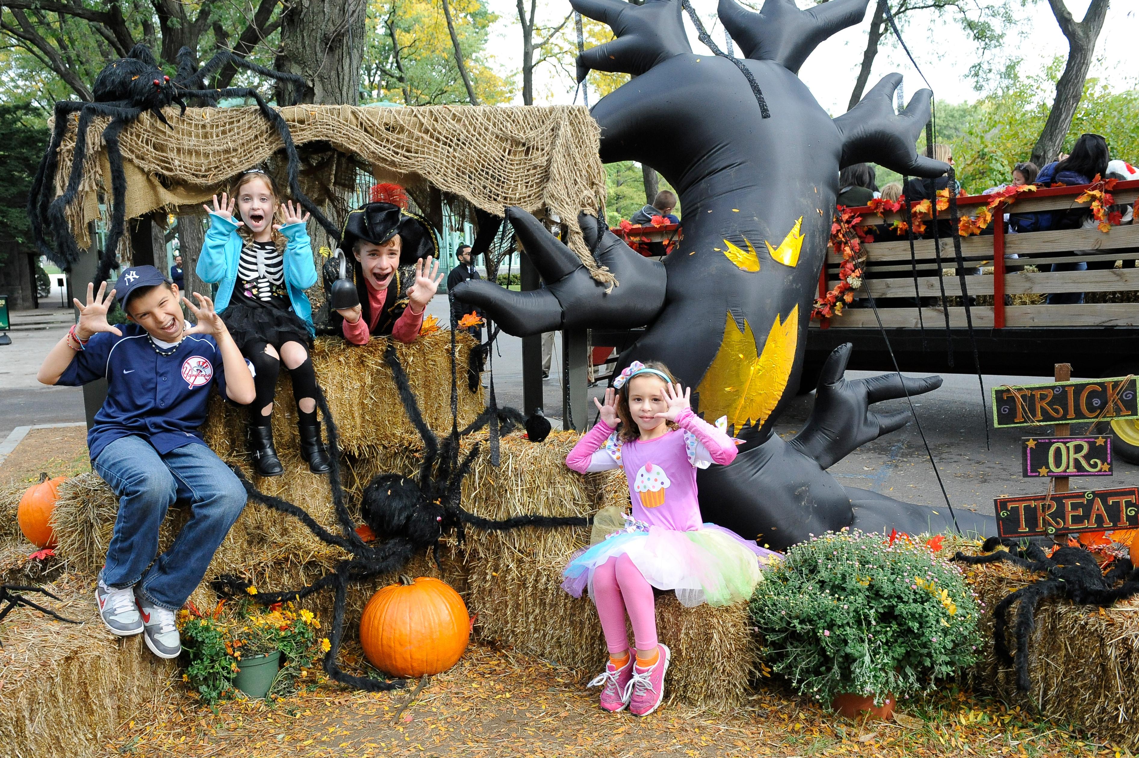 halloween, events, bronx, bronx zoo, boo at the zoo,