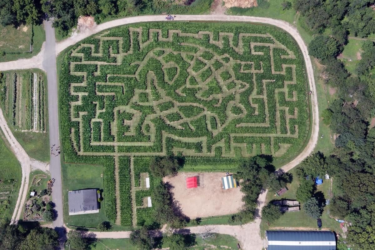 halloween, events, Queens Farm Museum, corn maze