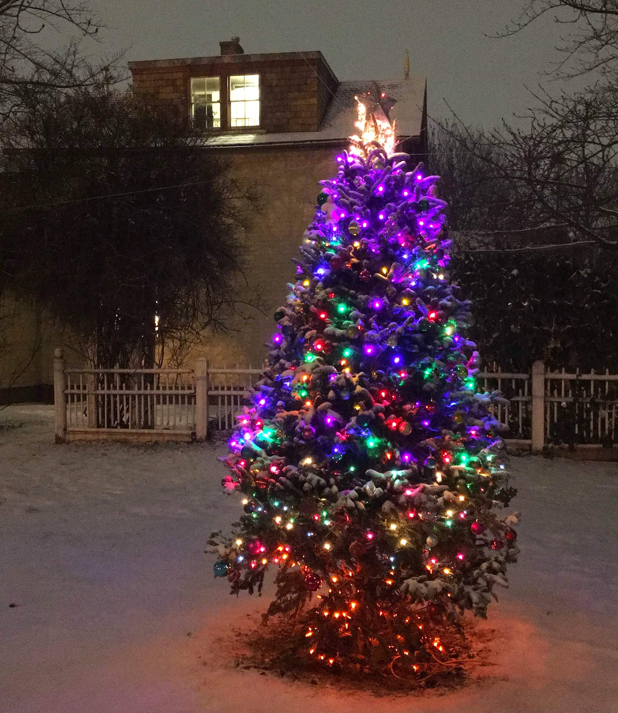 20 holiday trees in NYC that are not at Rockefeller Center