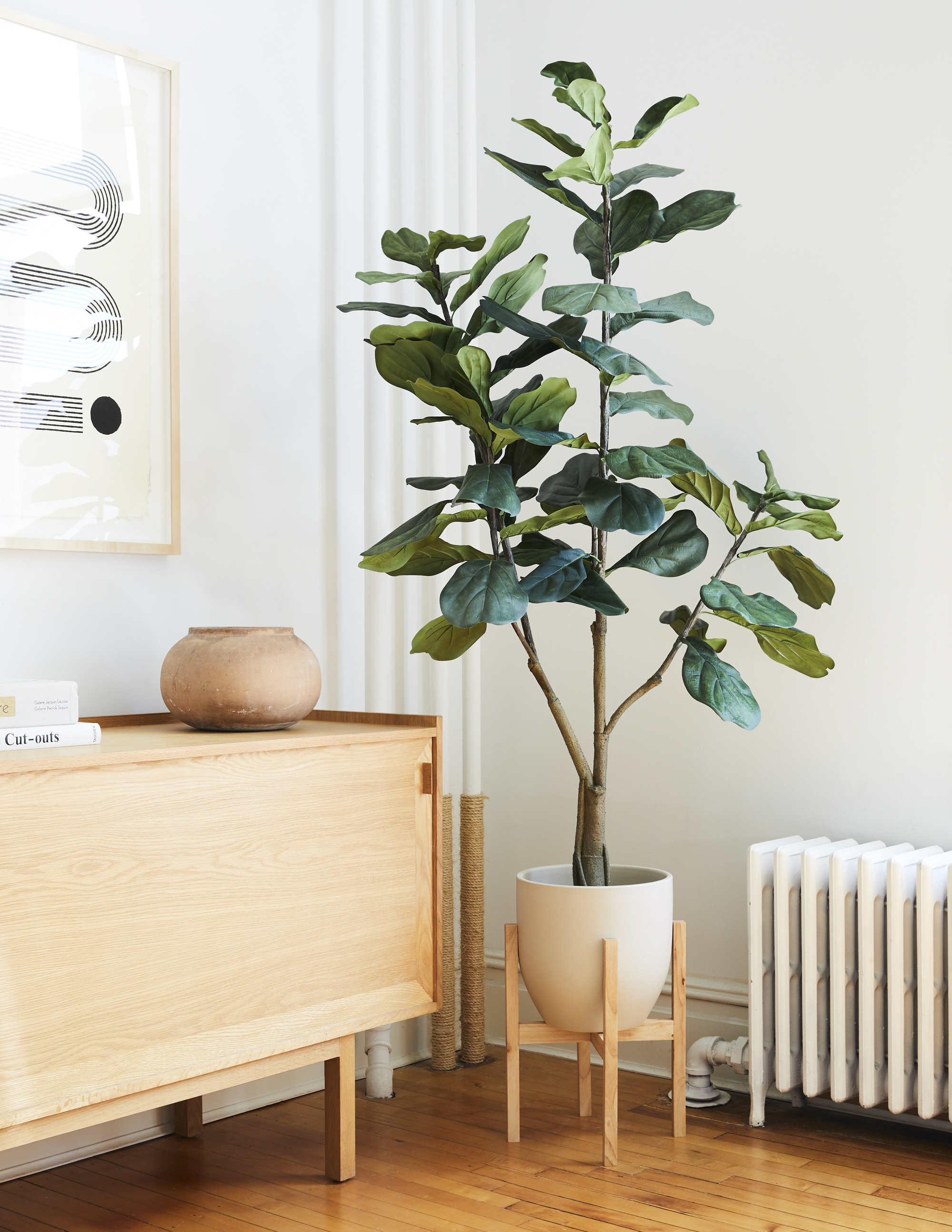 Fiddle Leaf Fig Plant, Jute Pot