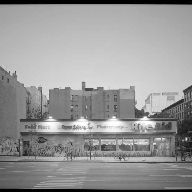 Photo exhibit highlights the disappearing single-story buildings of the East Village and LES