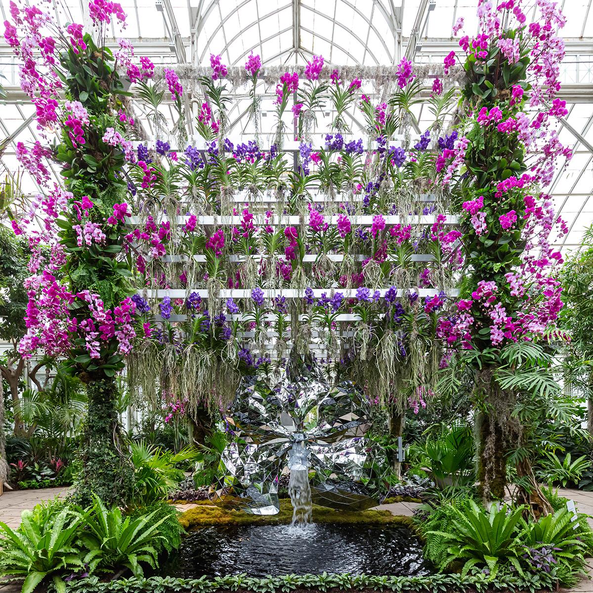 NYBG orchid show Kaleidoscope Jeff Leatham 1
