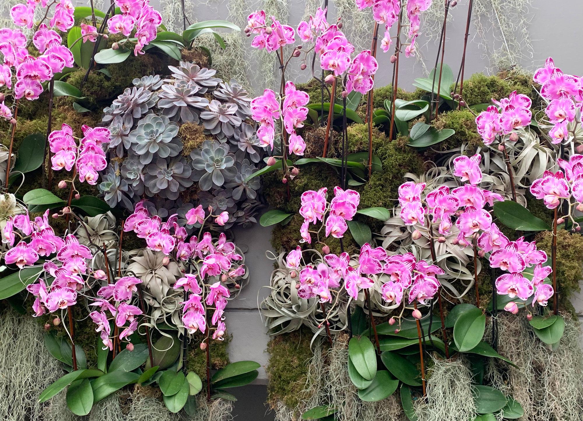 NYBG orchid show Kaleidoscope Jeff Leatham 24