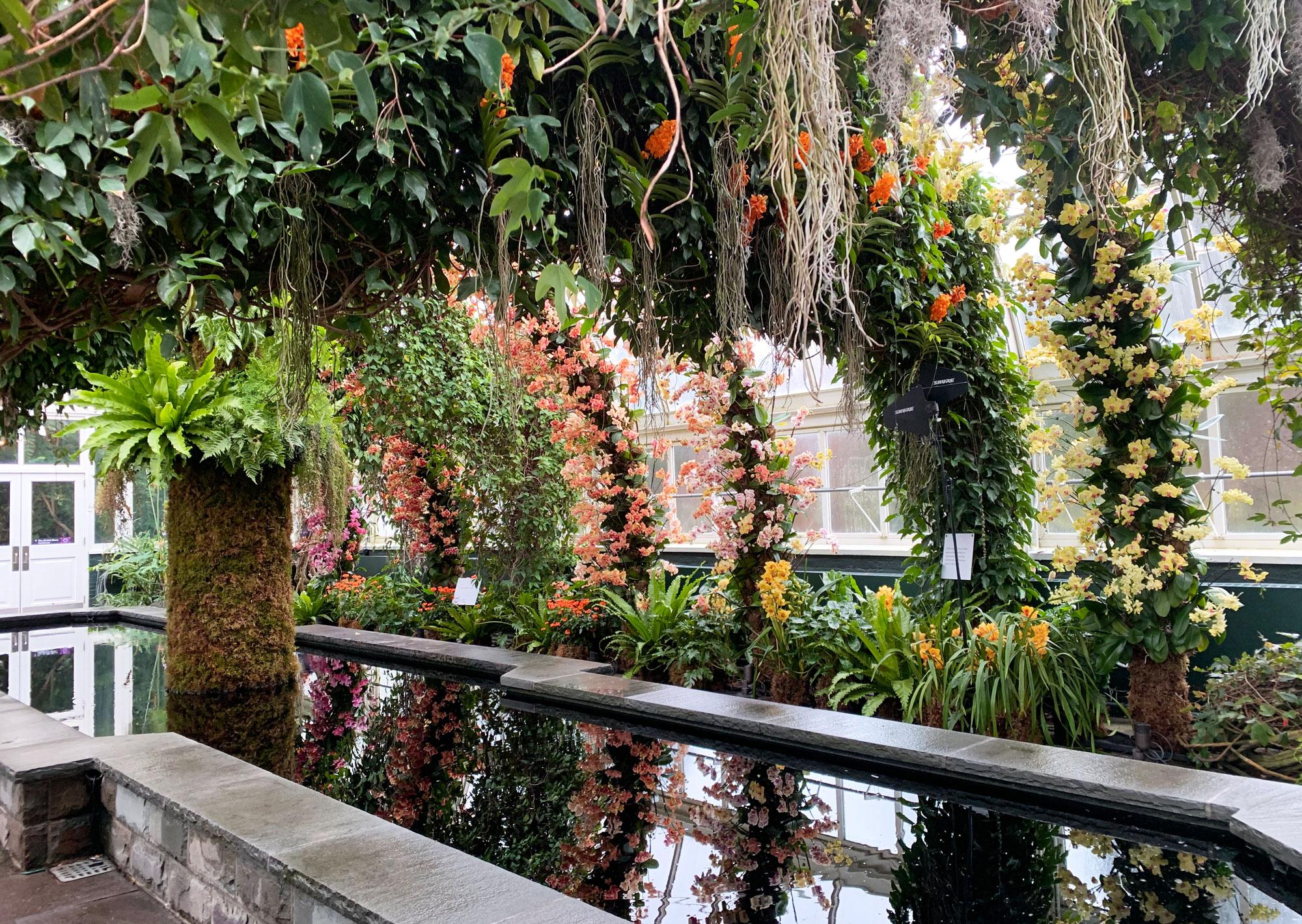 NYBG orchid show Kaleidoscope Jeff Leatham 26