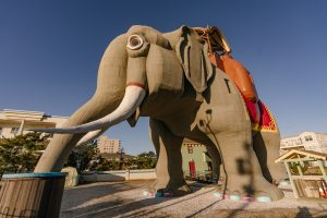 Lucy the Elephant, Margate NJ