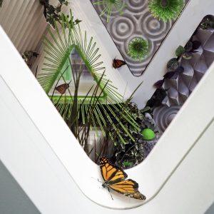 butterfly sanctuary, monarch sanctuary, terreform one, nolita, 23 cleveland place, architecture
