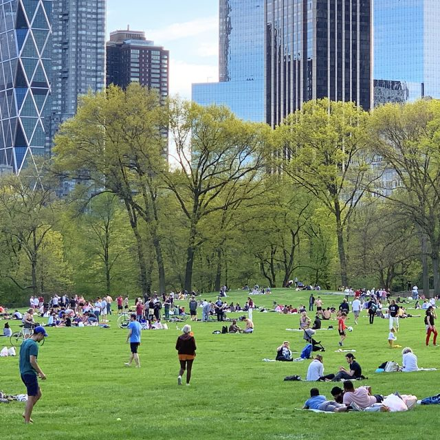Here's where to volunteer to keep NYC parks clean this Earth Day