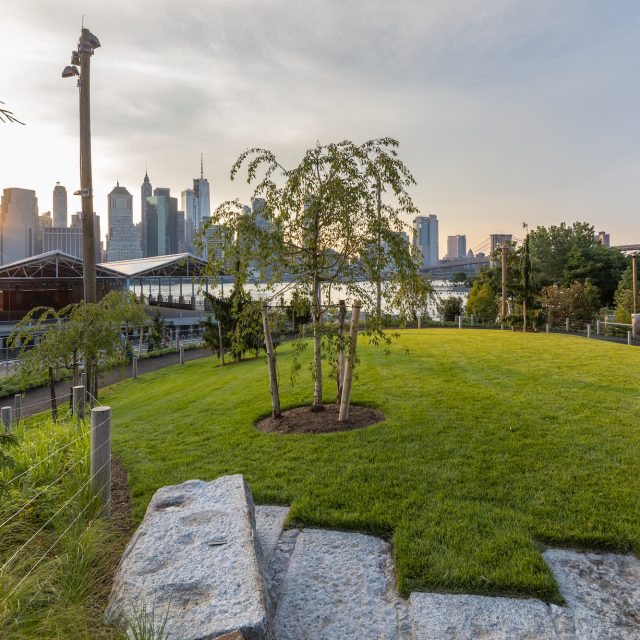 Three acres of new green space open at Brooklyn Bridge Park