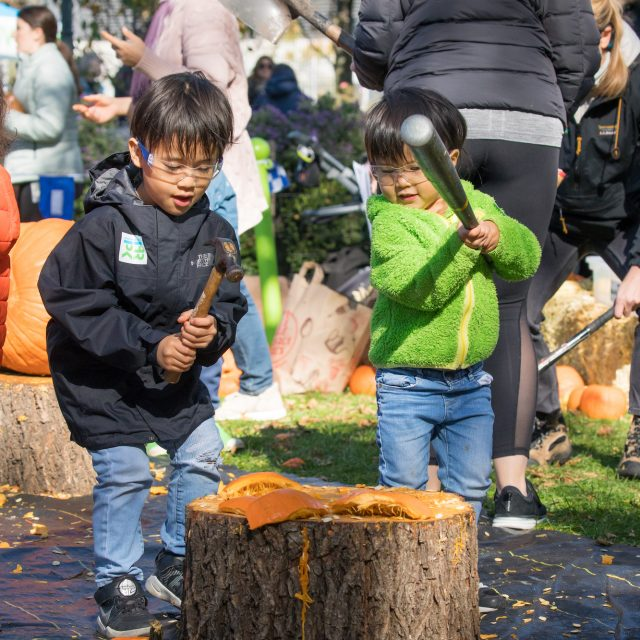 Smash and smush your old pumpkins into compost at Hudson River Park